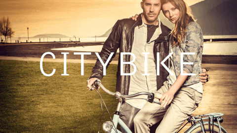 veloclusive-menu imagelink-bicycle-citybike